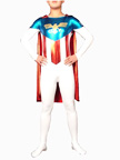 Shiny Metallic Lycra Superhero Costume
