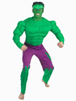Incredible Hulk Superhero Costume